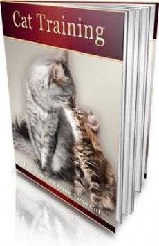 Ebook cover: Cat Training