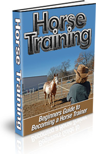 Ebook cover: Horse Training