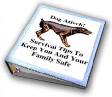 Ebook cover: Dog Attack!