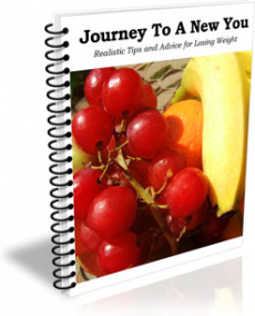 Ebook cover: Journey To A New You