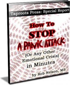 Ebook cover: How To Stop A Panic Attack In Minutes