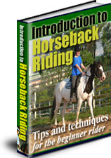 Ebook cover: Introduction to Horseback Riding