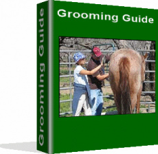Ebook cover: Grooming Guide
