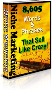 Ebook cover: Niche Marketing Words And Phrases That Sell Like Crazy!