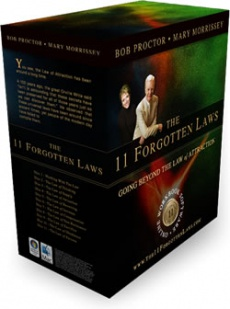 Ebook cover: The 11 Forgotten Laws