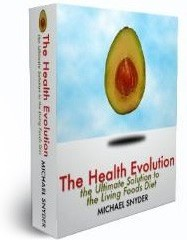 Ebook cover: Getting Started with the Raw Foods Diet