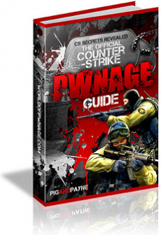 Ebook cover: Counter-Strike Pwnage