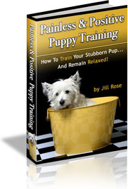 Ebook cover: Painless & Positive Puppy Training