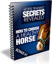 Ebook cover: How to Choose a Healthy Horse