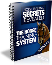 Ebook cover: The Horse Training System