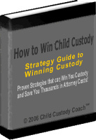 Ebook cover: How to Win Child Custody