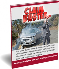 Ebook cover: Claim Buster