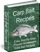 Ebook cover: Carp Bait Recipes