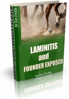 Ebook cover: Horse LAMINITIS and Founder Exposed