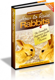 Ebook cover: How to Raise Rabbits