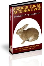 Ebook cover: Rabbit Production