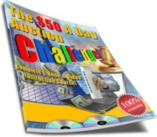 Ebook cover: The $50 A Day Auction Challenge