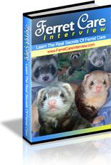 Ebook cover: Ferret Care
