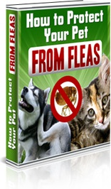 Ebook cover: How to Protect Your Pet From Fleas
