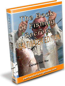 Ebook cover: The Book of Fishing Secrets