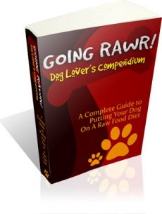 Ebook cover: Going Rawr