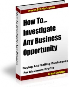 Ebook cover: How To Investigate Any Business Opportunity
