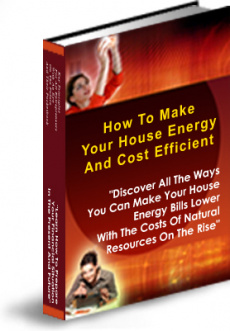 Ebook cover: How To Make Your House Energy And Cost Efficient