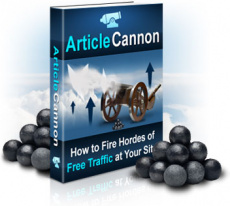 Ebook cover: Article Cannon