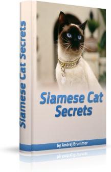 Ebook cover: Siamese Cat Secrets