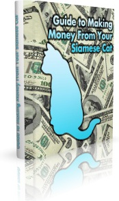 Ebook cover: Guide to Making Money From Your Siamese Cat