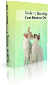 Ebook cover: Guide To Showing Your Siamese Cat