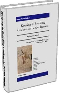 Ebook cover: Keeping & Breeding Crickets As Feeder Insects