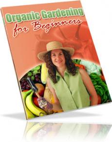 Ebook cover: Organic Gardening for Beginners