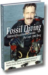 Ebook cover: Fossil Diving Identification Guide