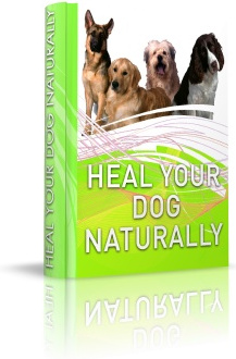 Ebook cover: Heal Your Dog Naturally