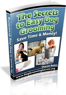 Ebook cover: The Secrets to Easy Dog Grooming