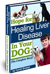 Ebook cover: Hope For Healing Liver Disease in Your Dog!