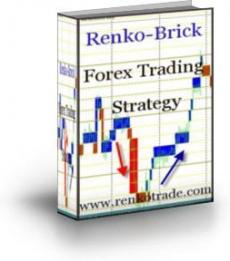 Ebook cover: Renko-Brick Forex Trading Strategy