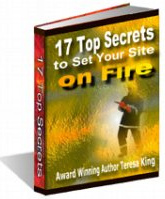 Ebook cover: 17 Top Secrets to Set Your Site on Fire