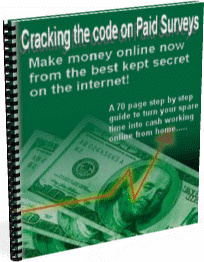 Ebook cover: Cracking the Code on Paid Surveys