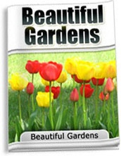 Ebook cover: Beautiful Gardens