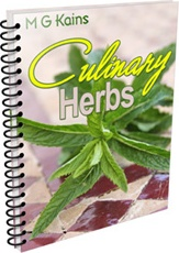 Ebook cover: Culinary Herbs