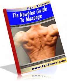 Ebook cover: The Newbies Guide To Massage