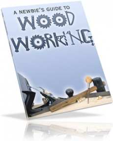 Ebook cover: A Newbies Guide to Woodworking