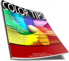 Ebook cover: Color and Online Sales