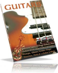 Ebook cover: GUITARS