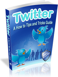 Ebook cover: Twitter - A How to Tips and Tricks Guide
