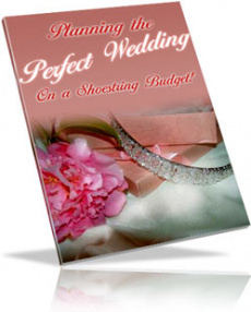 Ebook cover: Throw A Wedding on a Shoestring Budget