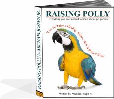 Ebook cover: Raising Polly