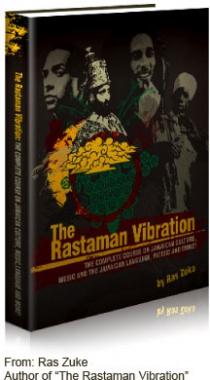 Ebook cover: The Rastman Vibration